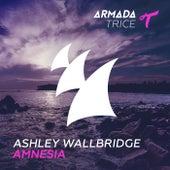 Amnesia by Ashley Wallbridge