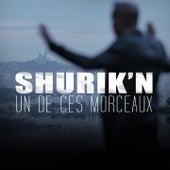 Un de ces morceaux by Shurik''n