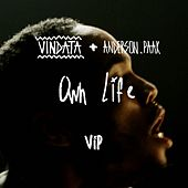 Own Life (feat. Anderson .Paak ) (VIP Mix) by Vindata