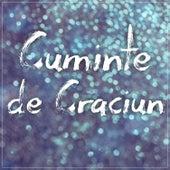 Cuminte de Craciun by Puya