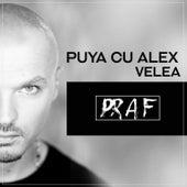 Praf by Puya