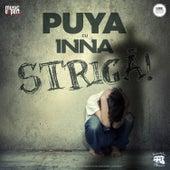 Striga! by Puya