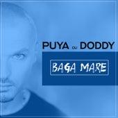 Baga Mare by Puya