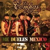 Me Dueles México by Los Compas del Terre