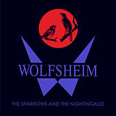 The Sparrows and the Nightingales (Ancient Methods 'Ode to the Night' Remix) by Wolfsheim