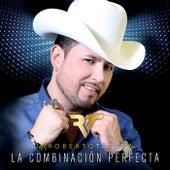 La Combinación Perfecta by Roberto Tapia