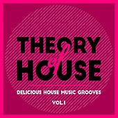 Theory of House (Delicious House Music Grooves), Vol. 1 by Various Artists