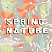 Spring Nature by NMR Digital