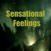 Sensational Feelings von Various Artists