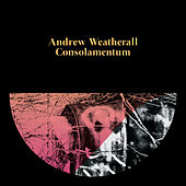 Consolamentum by Andrew Weatherall