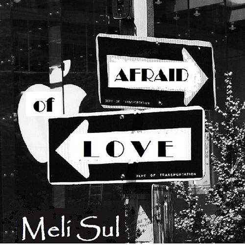 Afraid of Love by Meli Sul
