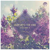 Deep Into the Vibe, Vol. 5 by Various Artists