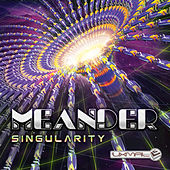 Singularity by Various Artists
