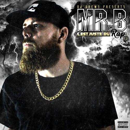 C'est juste du rap by Mr. B