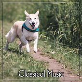 Classical Music – Ambient Classical, Ultimate Collection, Pure Relaxation, Piano by World Music Therapy