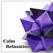 Calm Relaxation – Natural Recovery, Deep Serenity, Balancing Body, Pure Calm, Spa by Kundalini: Yoga, Meditation, Relaxation