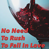 No Need To Rush To Fall In Love von Various Artists