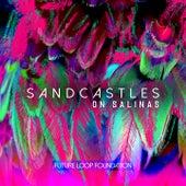 Sandcastles on Salinas by Future Loop Foundation