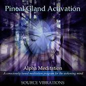 Pineal Gland Activation (936hz Alpha Meditation) by Source Vibrations