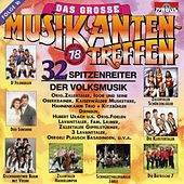 Das große Musikantentreffen - Folge 16 by Various Artists