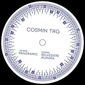 Panoramic by Cosmin TRG