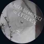 The Evidence by Jacek Sienkiewicz