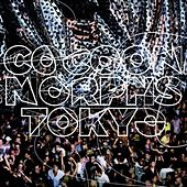 Cocoon Morphs Tokyo by Various Artists