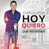 Hoy Quiero Que Regreses by Cuitla Vega