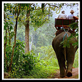 African Journey - Serengeti by Jai