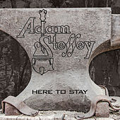 Here to Stay by Adam Steffey