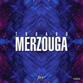 Merzouga by Todaro