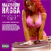 Maximum Ragga, Vol. 3 by Various Artists