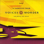 Sampler From Voice Of Wonder / Metal Art Disco by Various Artists