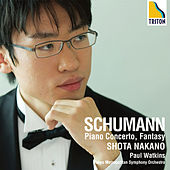 Schumann: Piano Concerto, Fantasy, Arabesque, Traumerei by Various Artists