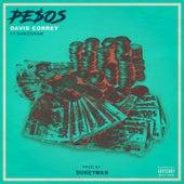 Pesos (feat. Sanogram) by David Correy