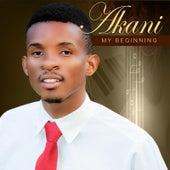 My Beginning by Akani