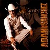 Canta Corridos by Adan