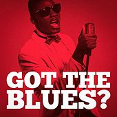 Got the Blues? (Indie Blues Lives On) by Various Artists