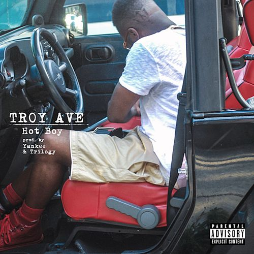 Hot Boy - Single by Troy Ave
