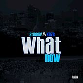 What Now by Kaze