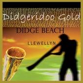 Didgeridoo Gold - Didge Beach by Llewellyn