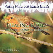 Healing Music with the Sound of Birdsong by Llewellyn