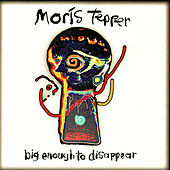 Big Enough To Disappear by Moris Tepper