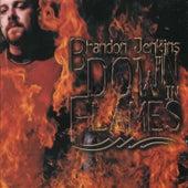 Down in Flames by Brandon Jenkins