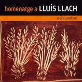 Homenatge a Lluís Llach. Si Véns amb Mi by Various Artists