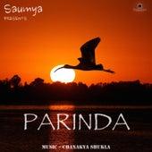 Parinda by Saumya