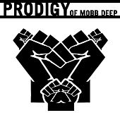 Untitled by Prodigy (of Mobb Deep)