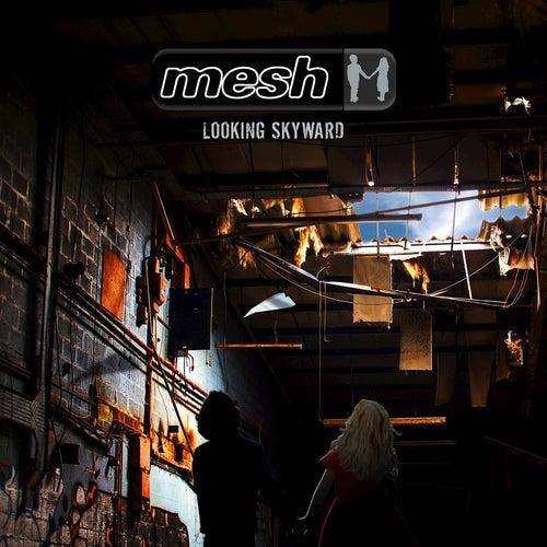 Looking Skyward by Mesh