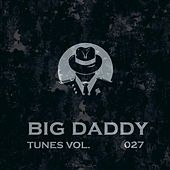 Big Daddy Tunes, Vol.027 by Various Artists