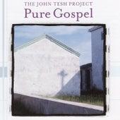 Pure Gospel by John Tesh